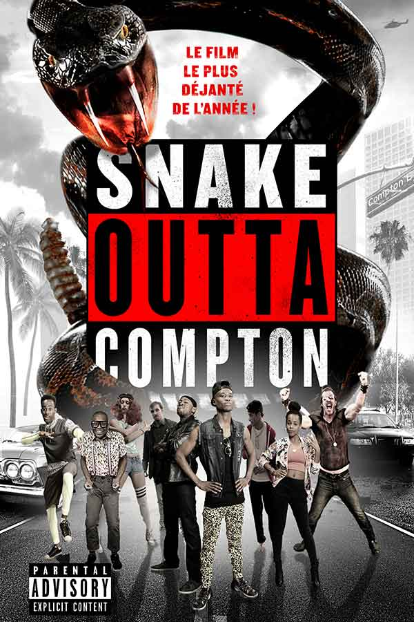SnakeOuttaCompton-affiche-fipfilm